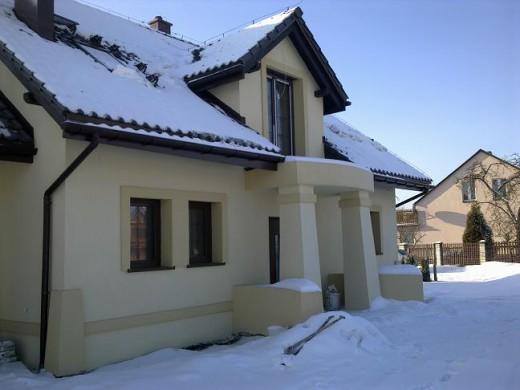 20110104077